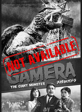 Product images preview gamera na